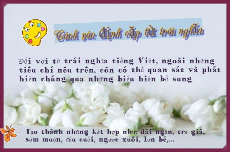 luyen-thi-thu-khoa-vn-Cach-xac-dinh-cap-tu-trai-nghia-01.jpeg